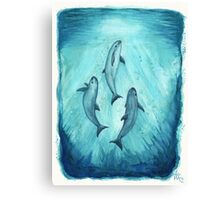 Song of the Vaquita Canvas Print