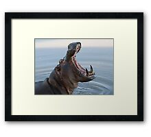 Hippo jaws Framed Print