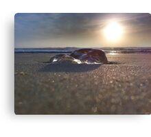 Dawn Viewed Through A Jellyfish Lens Canvas Print