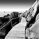 Staggering Wooden Path in Black and White by vanyahaheights