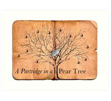A Partridge in a Pear Tree Art Print