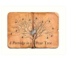 A Partridge in a Pear Tree Art Print