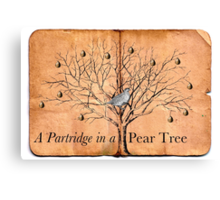 A Partridge in a Pear Tree Canvas Print