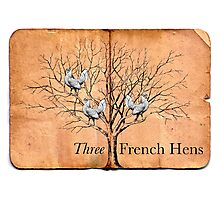 Three French Hens Photographic Print