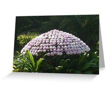 Leaves happily dancing around a purple mushroom Greeting Card