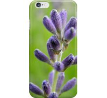 Lavander iPhone case iPhone Case/Skin