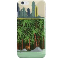 Falls iPhone Case/Skin