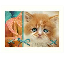 Raindrops on Roses and Whiskers on Kittens Art Print