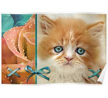 Raindrops on Roses and Whiskers on Kittens Poster