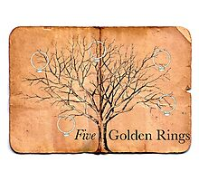 Five Golden Rings Photographic Print