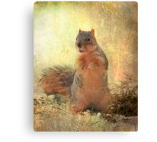 """ Got Peanuts ?"" Canvas Print"