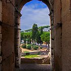View from the Colosseum by Tom Gomez