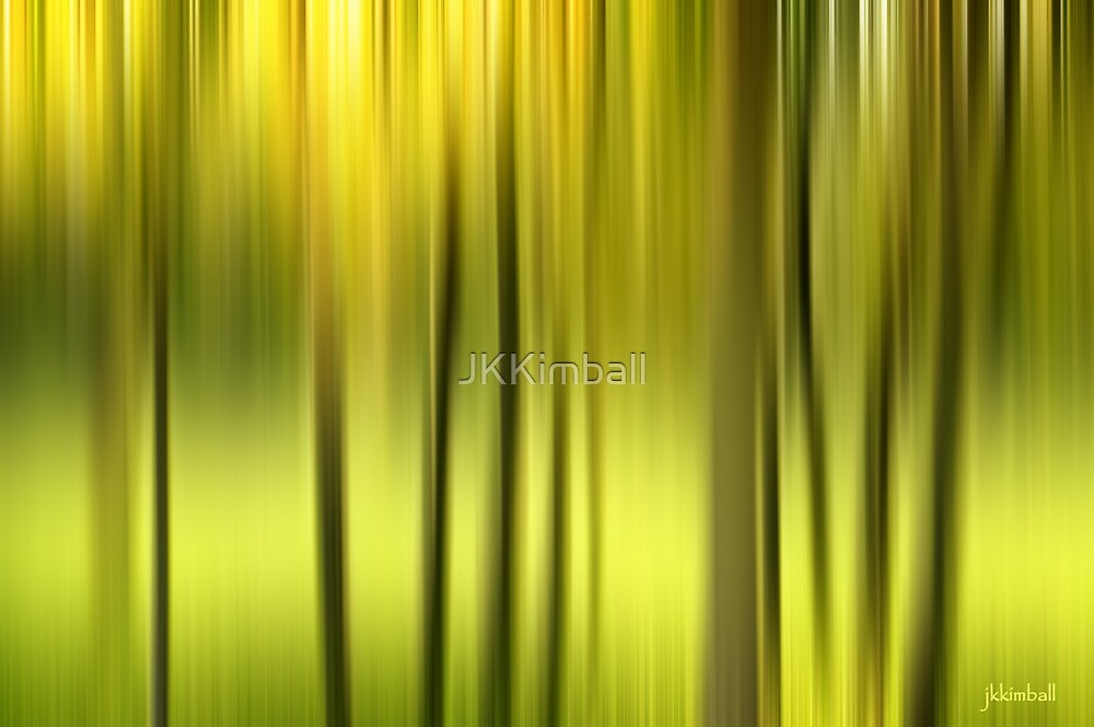 Northern Forest Abstract by JKKimball