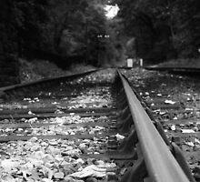 Train Track Traveled by Mrpunkfox
