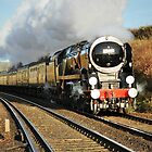 BR (S) Merchant Navy Class 4-6-2 no 35028 clan line by Steve James