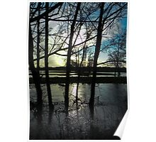 Trees in the flood Poster