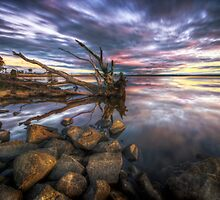 Tranquility by Lincoln Harrison