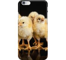 Little Yellow Chickens iPhone Case/Skin
