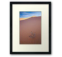 Coral Pink Dunes Framed Print