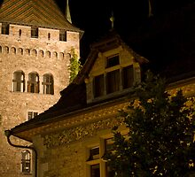 Zurich Townhall by Peter Sheppard