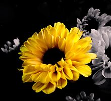 Yellow Floral by garamer