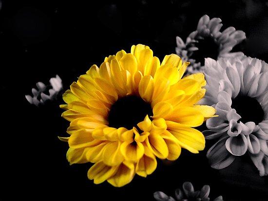 Yellow Floral by garamer
