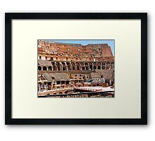 Where are the Lions Framed Print