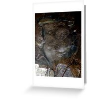 Faces on Rock V Greeting Card