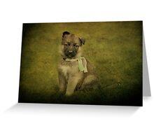 Puppy Sitting Greeting Card