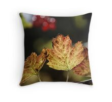 West Sweden Autumn colour Throw Pillow