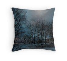 Moonlight ! Throw Pillow