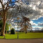 A corner of Pittencrieff Park by Tom Gomez