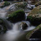Adirondack Water by SAJONES