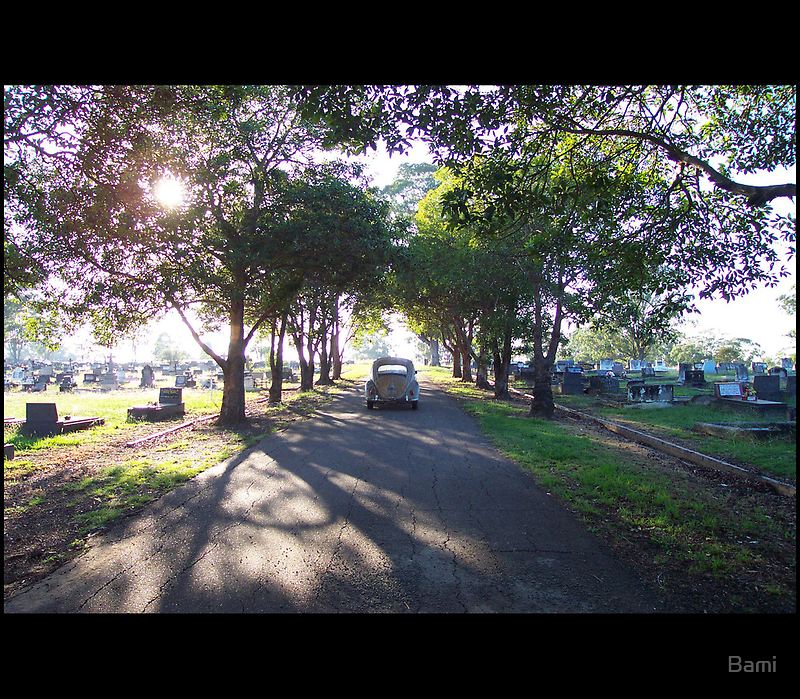 Beetle at the Graveyard by Bami