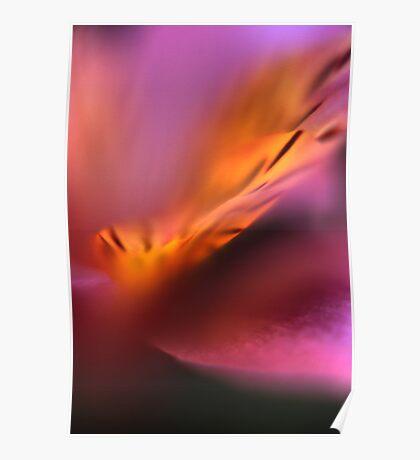Bloom # 2 Poster