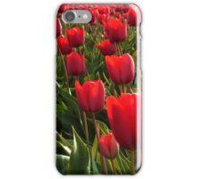 A field full Red Tulips iPhone Case/Skin