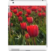 A field full Red Tulips iPad Case/Skin