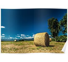 hay bale in the field Poster