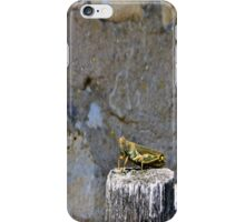 Grasshopper iphone case iPhone Case/Skin