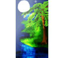 Lonely Moonlight Night Photographic Print