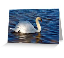 A SWAN  IN THE SWAN RIVER Greeting Card