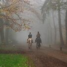 Riding through the misty forest by jchanders