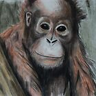 Tinted charcoal orangutan by gogston