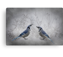 Two Jays Metal Print