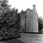 Castle in Phoenix Park, Dublin by Dave  Kennedy