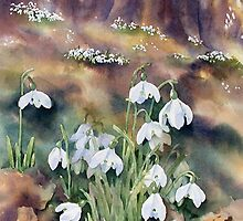 Snowdrops in the Wood by Ann Mortimer