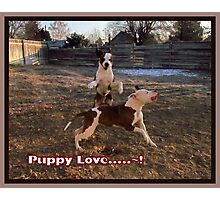 Buster and Sweetie- Fun, Fun, Fun~!!!! Photographic Print