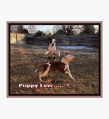 Buster and Sweetie- Fun, Fun, Fun~!!!! Photographic Print