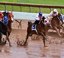 A Day at the Races by Ray Chiarello
