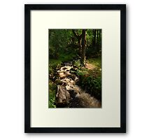 The Bridle Path Framed Print